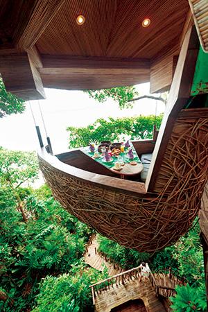 自然を体感してエコを実践する「ソネバ」に滞在することの意味