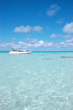 テティアロア環礁の生き物たちに出会いに