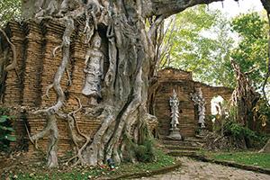 古のタイと現代が出会うリゾート「ダラデヴィ」