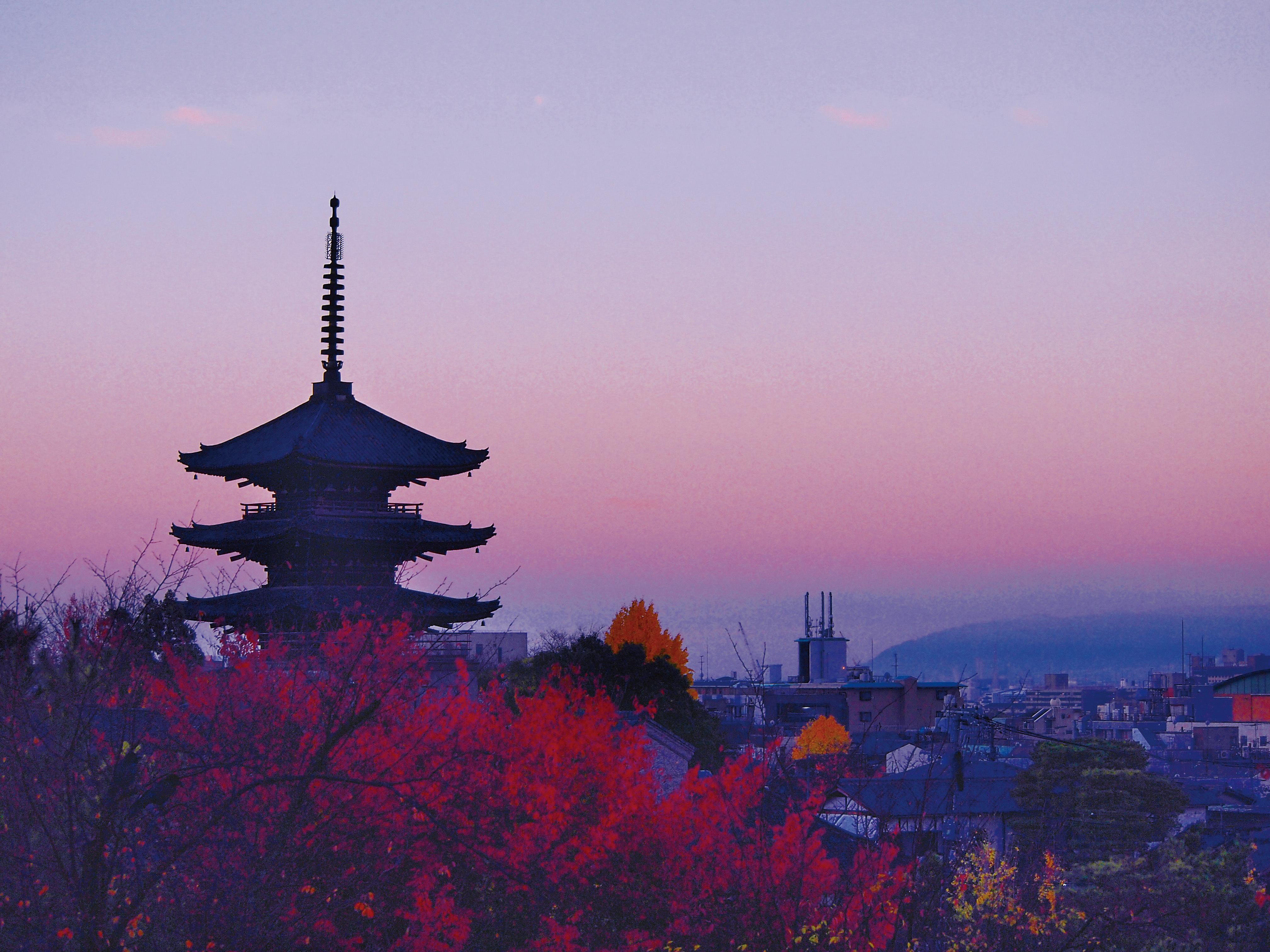 風情あふれる数寄屋造りの料亭「高台寺 十牛庵」が京都にオープン