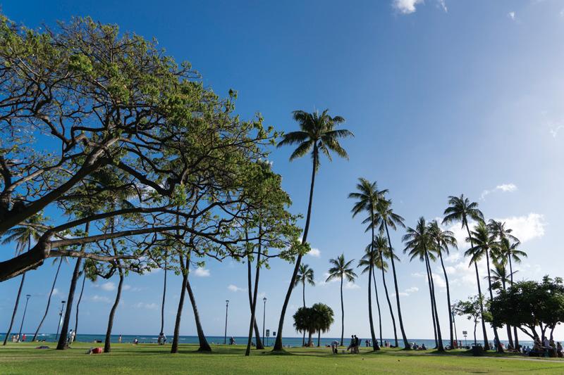 数字を通してハワイの魅力を紹介 新プロモーション「発見 ハワイ」