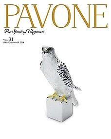 PAVONE No.31